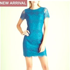 NWT Kensie Peacock Lace Short Sleeve Sheath Dress